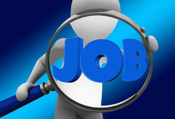 В Минтруде обнародовали данные о недельном снижении количества безработных