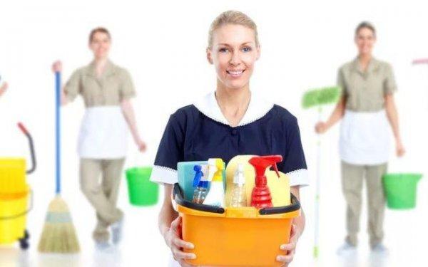 Уборка в офисе, основные правила уборки офисных помещений