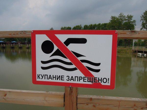 В Челябинске запретили купаться на 29 пляжах