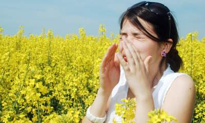 Названы неожиданные источники аллергии, на которые обычно не обращают внимание