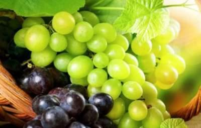 Ученые рассказали, почему нужно есть виноград