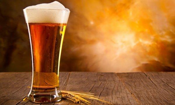 Баня в Петербурге купит 4,5 тысяч бутылок пива