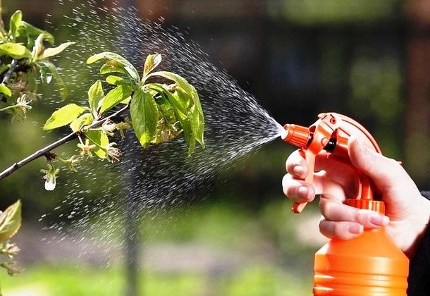 Защита сада и огорода от вредителей и сорняков