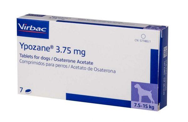 Ипозан для собак: особенности применения препарата