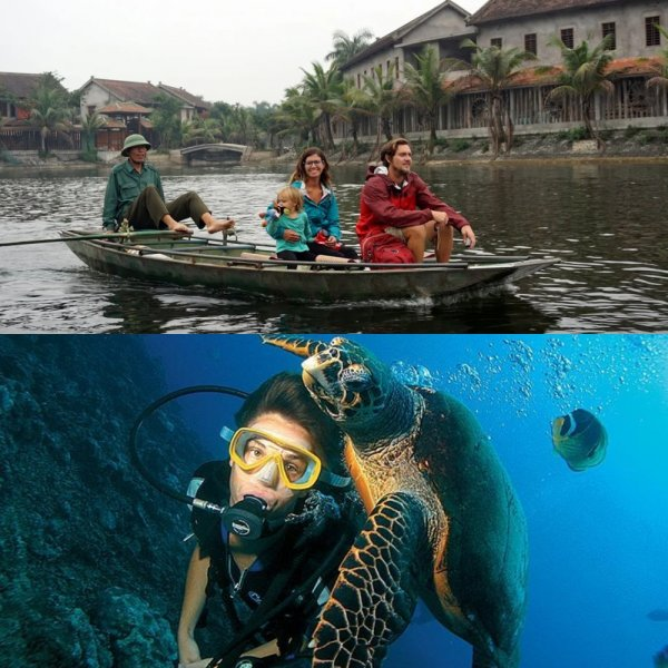 С акулами и без: Экстремальный дайвинг во Вьетнаме стал привлекать туристов из России