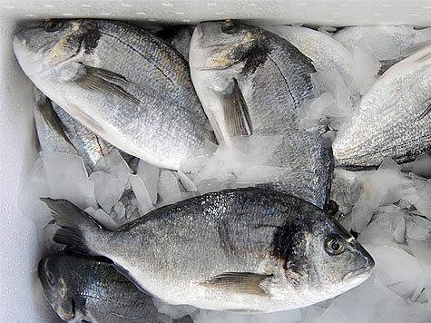 Как правильно выбирать замороженную рыбу